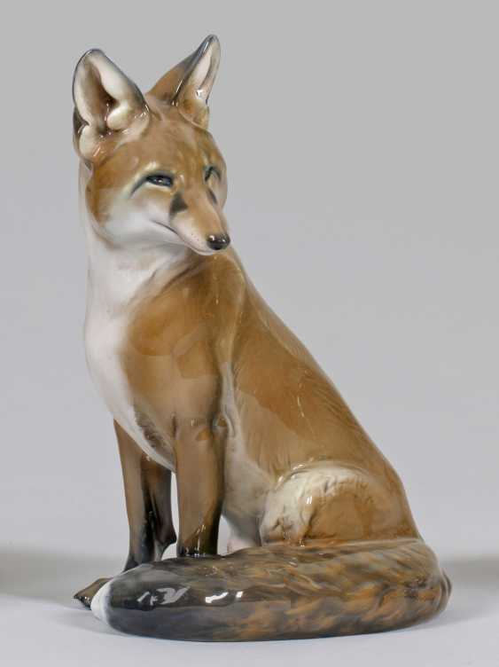Sitting Fox - photo 1