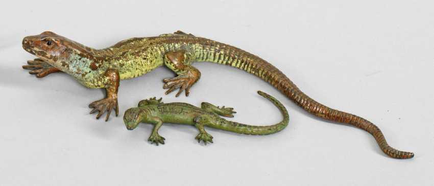 Two Salamander Characters - photo 1