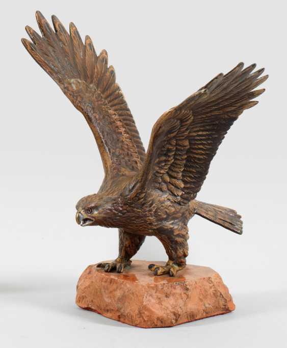 Great Eagle - photo 1