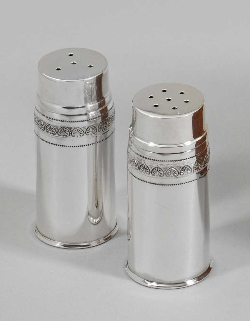Salt and pepper shakers - photo 1