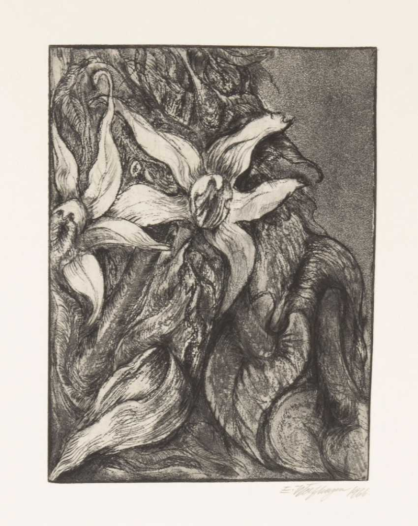 Wolf Hagen, Ernst: etchings to French - photo 3
