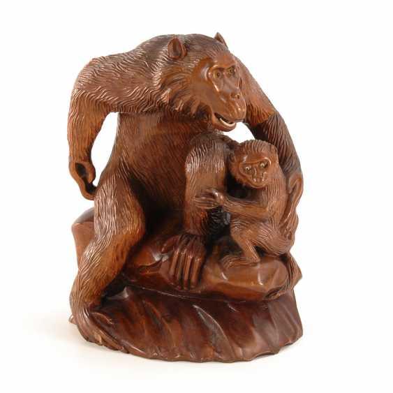 Affenmutter mit Kind. - Foto 1
