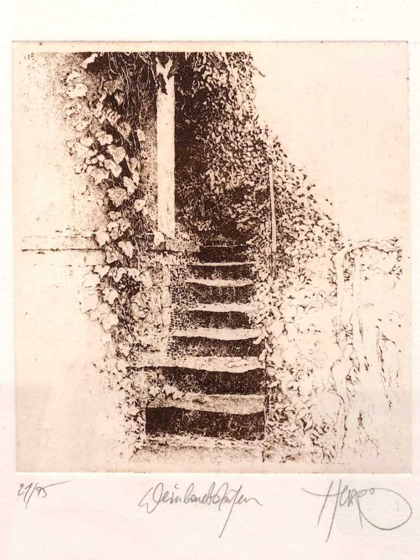 """Walter Herzog: """"Vine Leaves."""" Etching. Without The Year. - photo 1"""