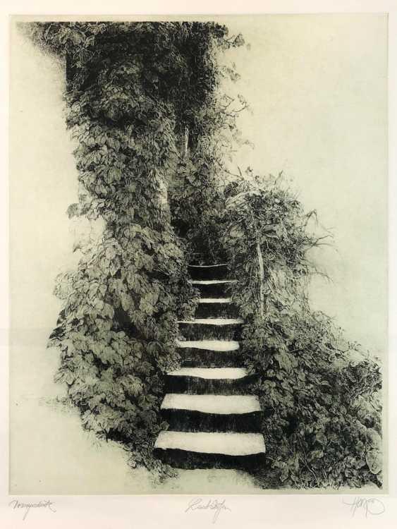 "Walter Herzog: ""Leaf Levels"". Etching. 1995. - photo 1"