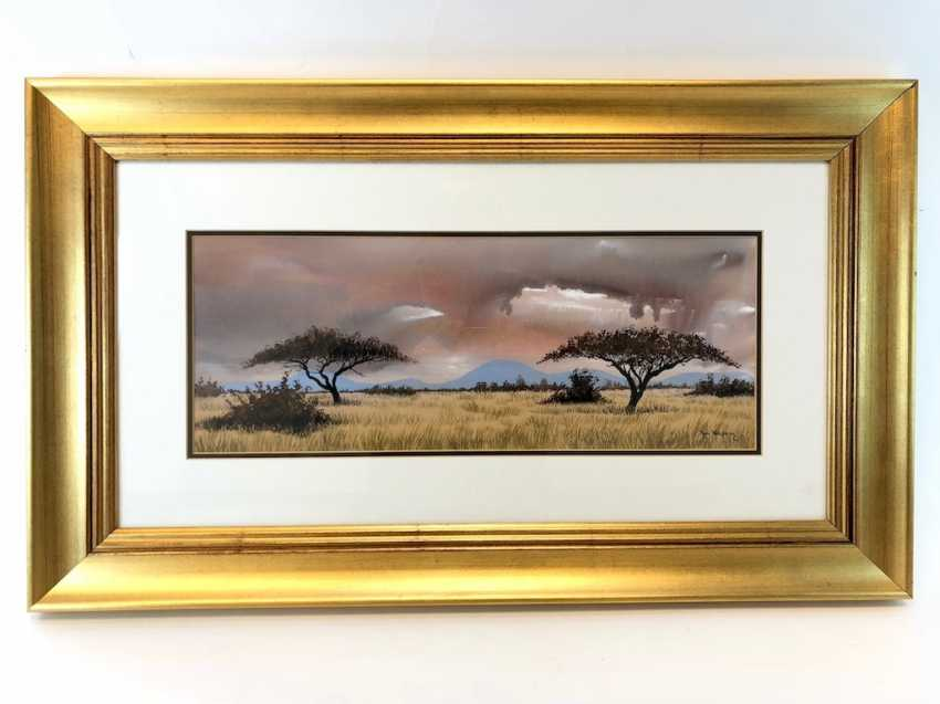 Ron Waldeck (1946 Rhodesia - in South Africa): steppe landscape in South Africa, with an umbrella acacia. Watercolor on handmade paper. - photo 1