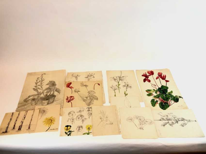 John Beck: drawing Stolpen, studies, architecture, animals and plants. Early 20. Century - photo 3