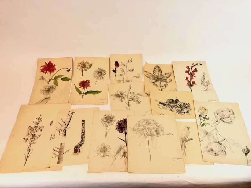 John Beck: drawing Stolpen, studies, architecture, animals and plants. Early 20. Century - photo 4