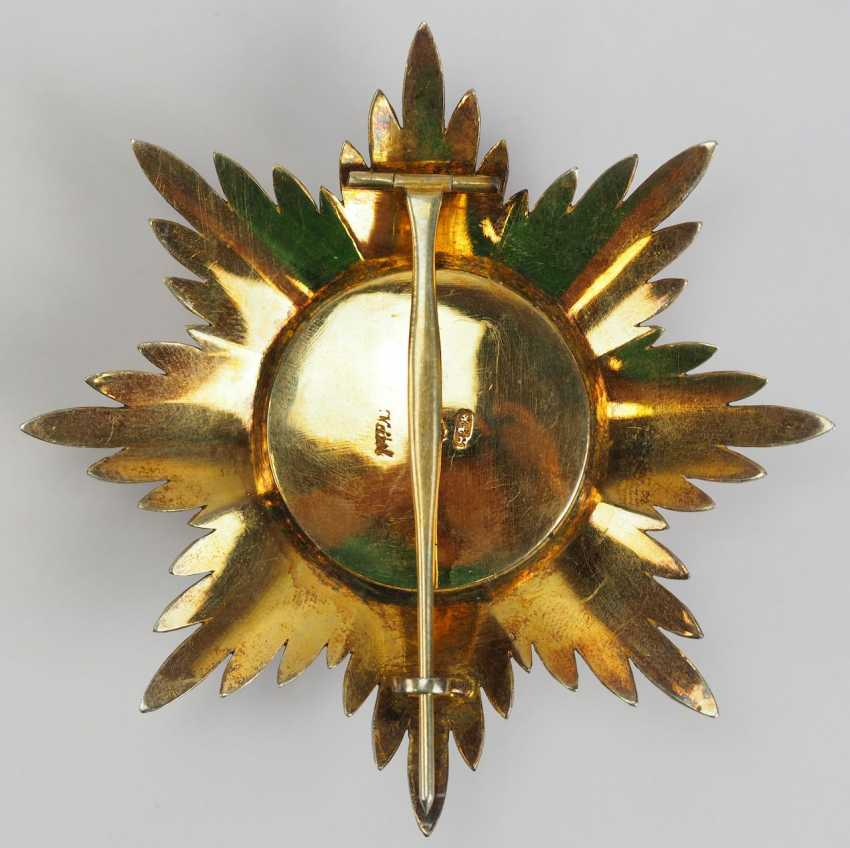 Russia: order of St. Alexander Newksi, breast star. - photo 3
