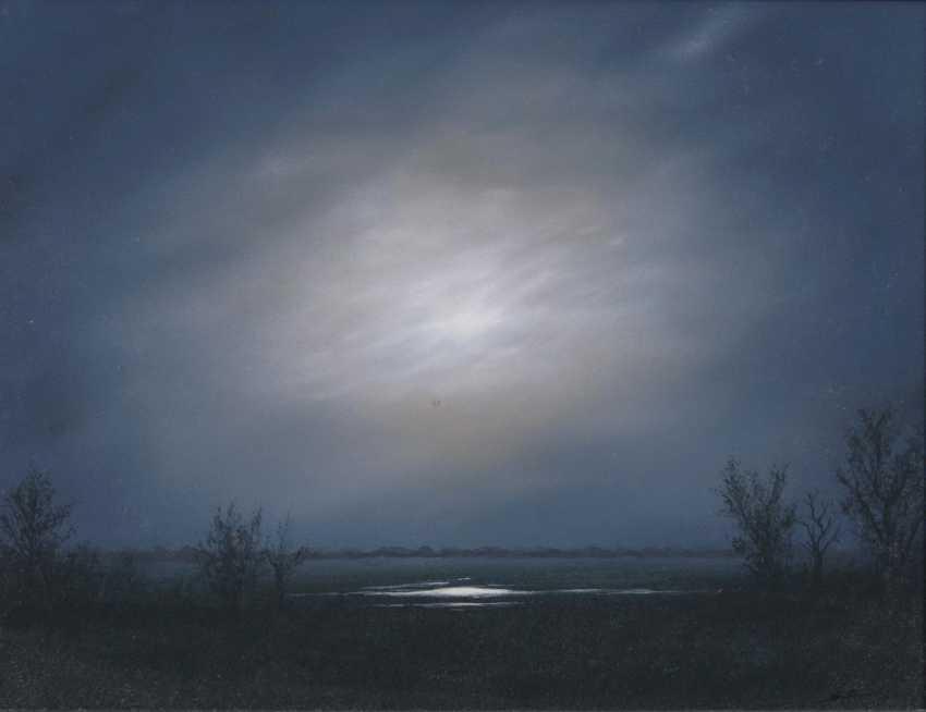 Moon light - photo 1