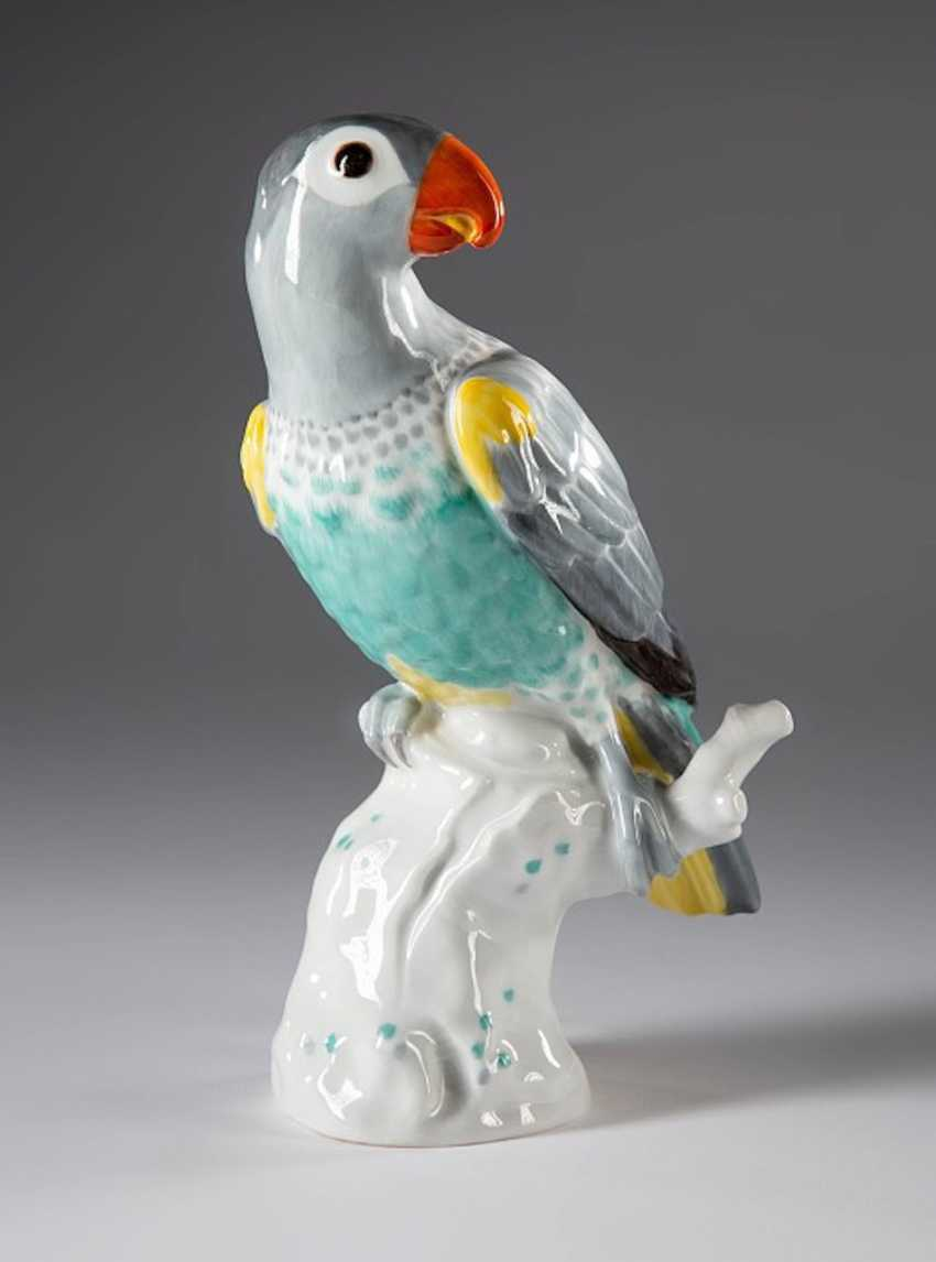 Porcelain Figurine Grey Parrot, - photo 1