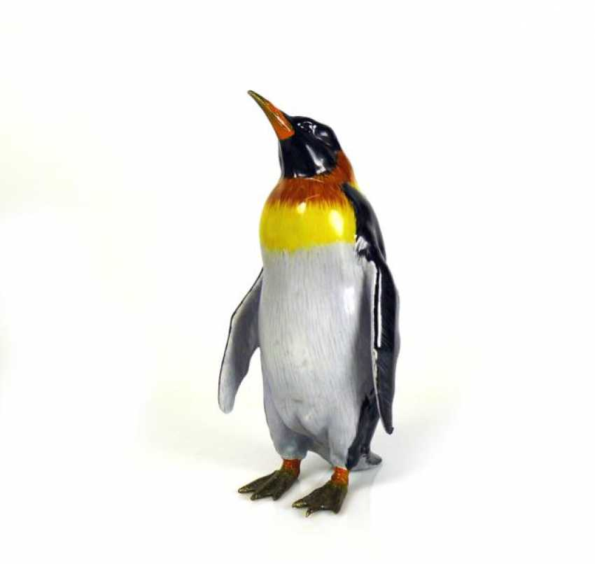 Pinguin - photo 1