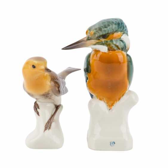 NYMPHENBURG 2 characters 'Kingfisher' and 'Robin', 20. Century. - photo 1
