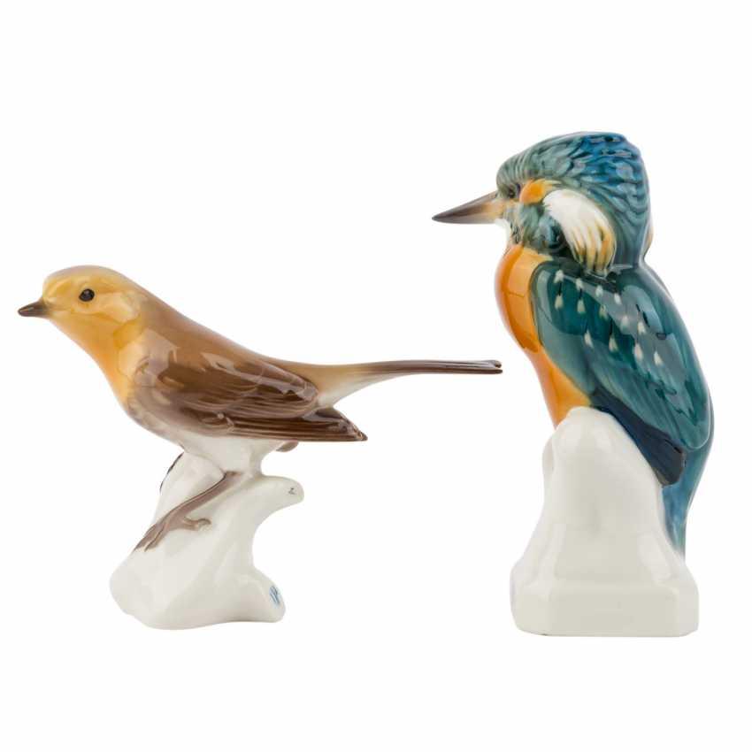 NYMPHENBURG 2 characters 'Kingfisher' and 'Robin', 20. Century. - photo 2