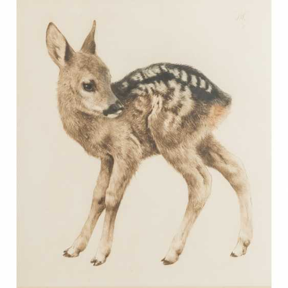 "MEYER-EBERHARDT, KURT (1895-1977), ""Standing fawn"" - photo 1"