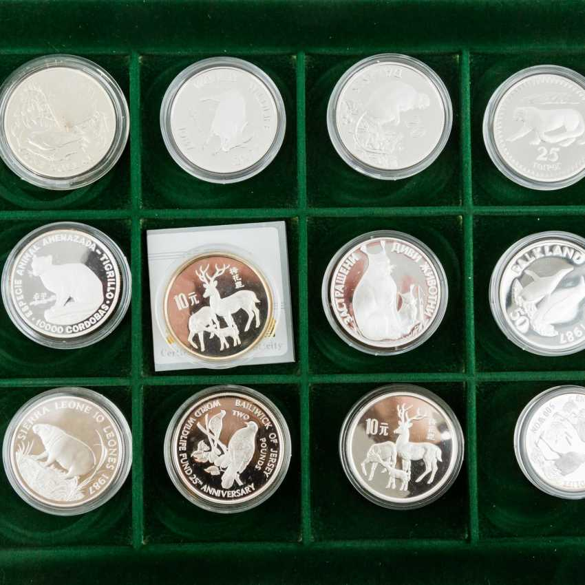 WWF - collection of 36 silver coins, - photo 4