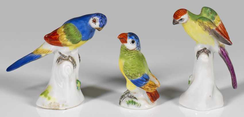 Three Miniature Parrots - photo 1