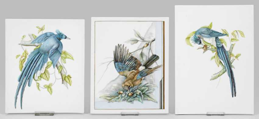 Three porcelain pictures with paintings of Brigitte Holtz - photo 1
