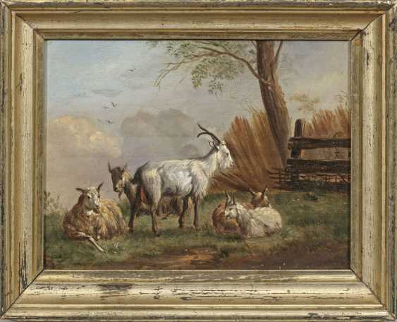 Dutch or Belgian animal painter - photo 1