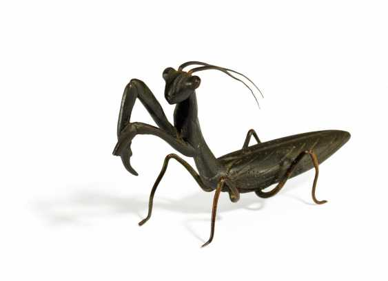 Model of a praying mantis in its original size - photo 1