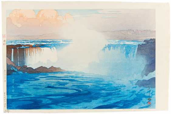 Im Alter Von (1876 - 1950). Niagara Falls - Foto 1