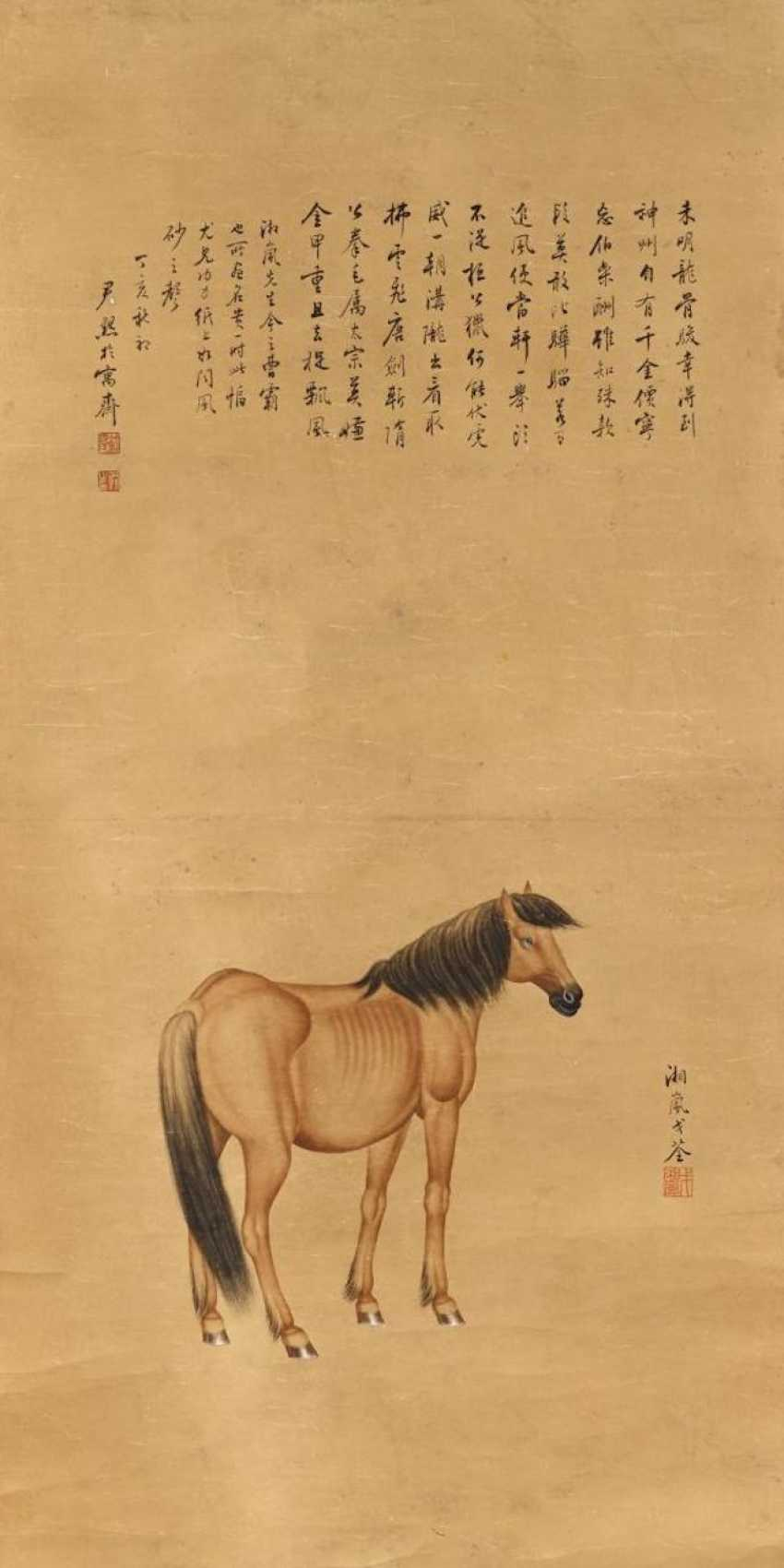 Horse - photo 1