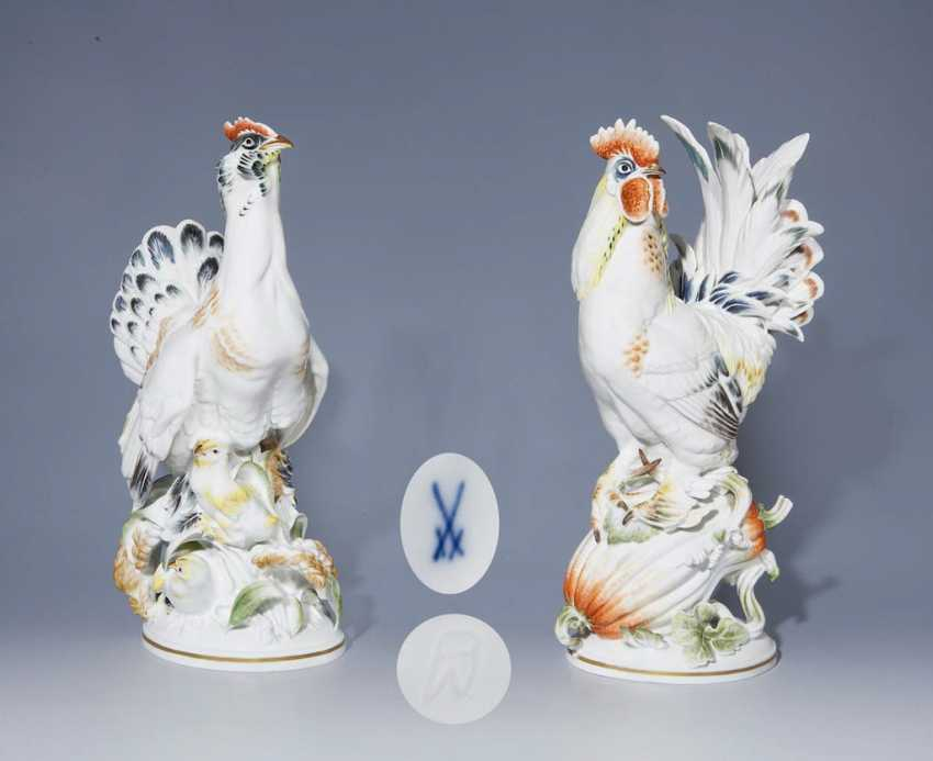Rooster and hen. - photo 1