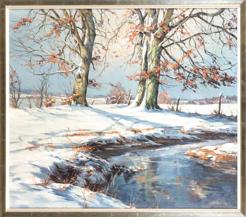 Fritz Ching: Sunny winter landscape. - photo 1