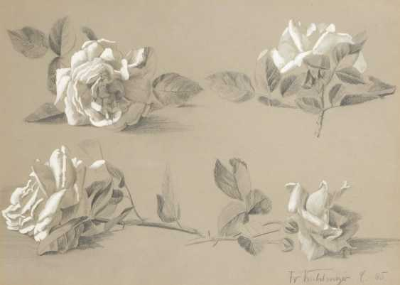 KUHLMEYER: the rose study. - photo 1