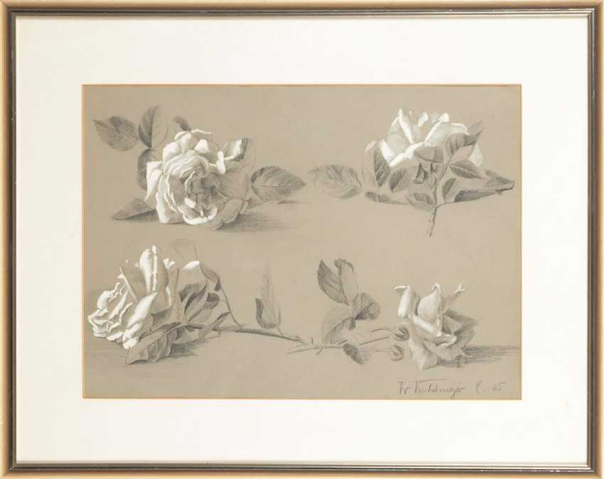 KUHLMEYER: the rose study. - photo 2