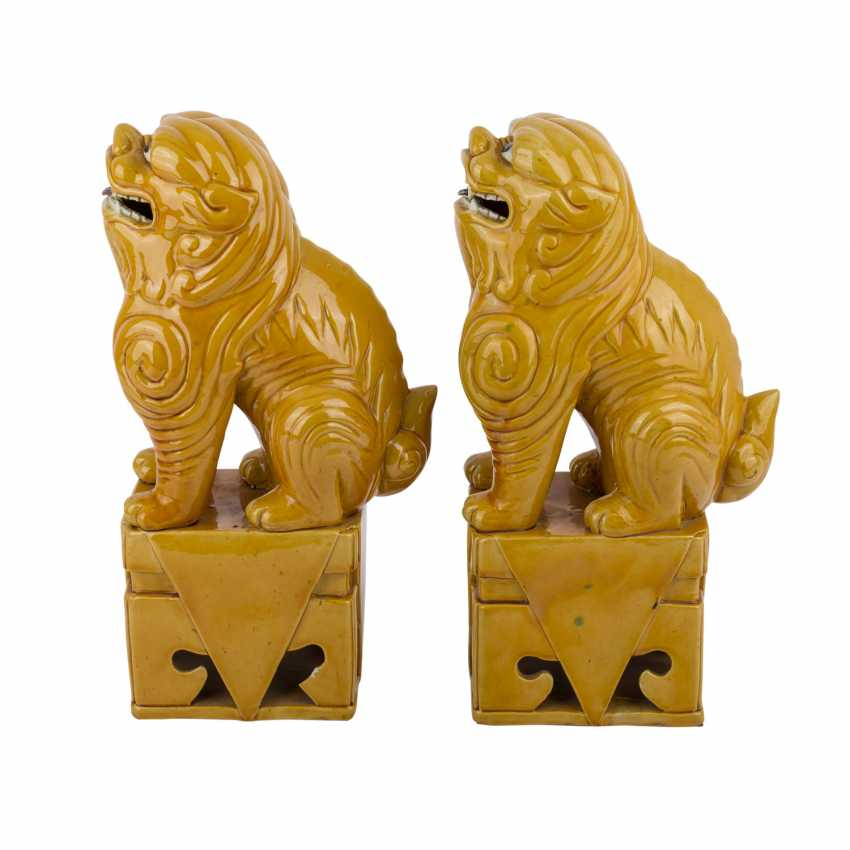 Pair of ochre glazed guardian lions. CHINA, time of the Republic. - photo 3