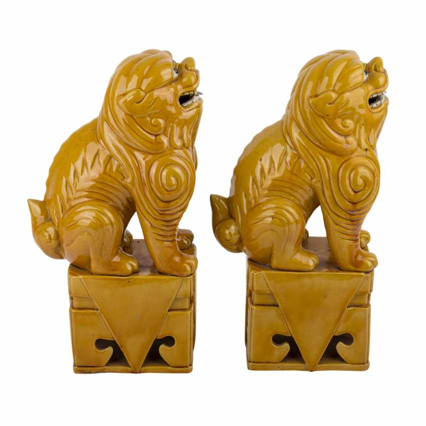 Pair of ochre glazed guardian lions. CHINA, time of the Republic. - photo 5