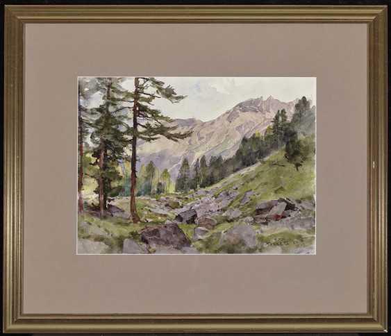 Compton, Edward Harrison. Mountain landscapes - photo 4