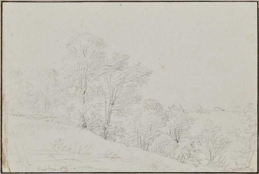 Kobell, Franz, attributed to. Tree landscape - photo 1