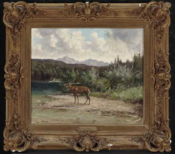 Voltz, Ludwig. The deer on the shore - photo 2
