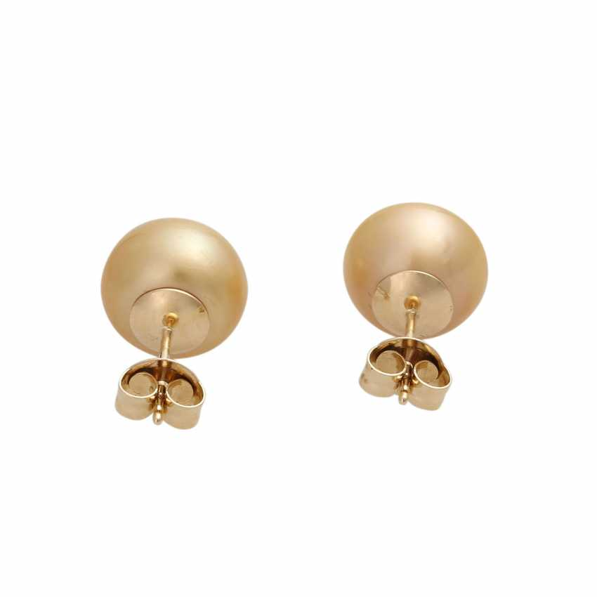 Stud earrings with 1 champagne colored South sea cultured pearl, - photo 4