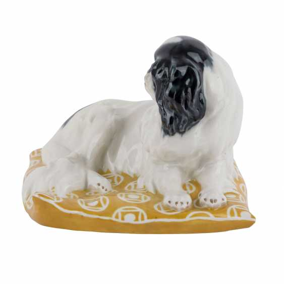 "MEISSEN animal figurine ""Japanese Chinhund on pillow"", before 1924. - photo 2"