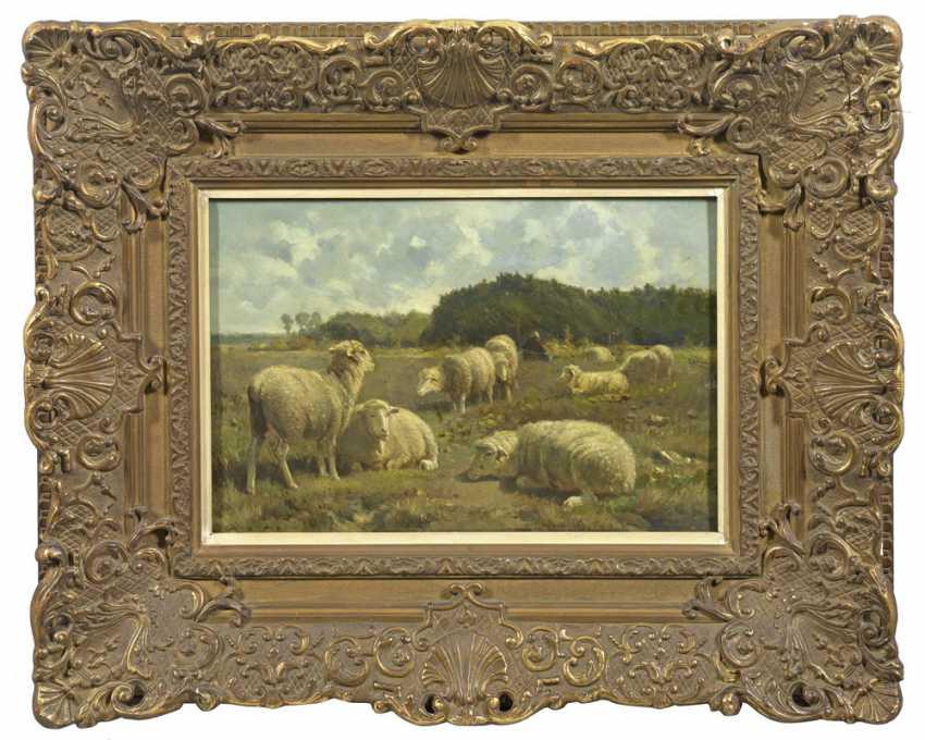 Корнелиус Ван Lemputten - фото 1
