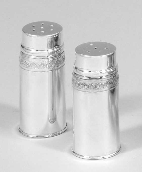 Пара соль и перец шейкер - фото 1