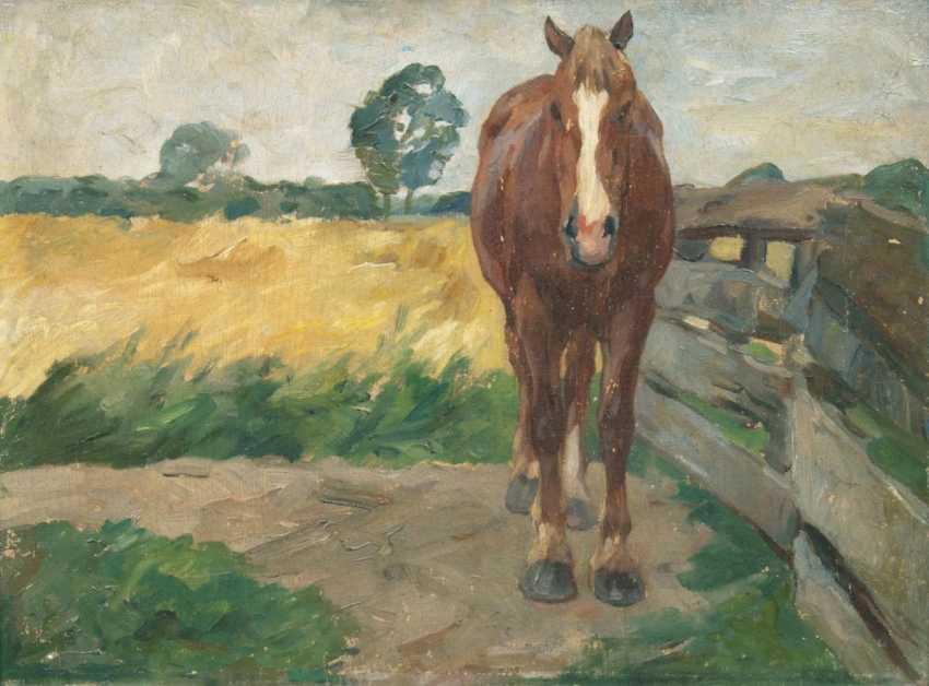 Стоящая Лошадь - фото 1