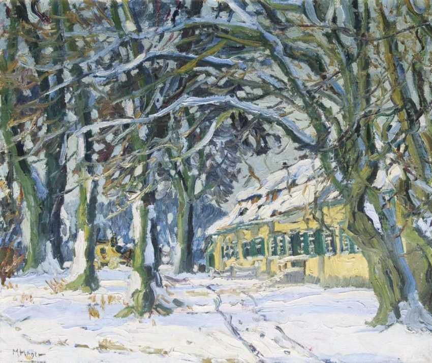 Снежная Аллея - фото 1