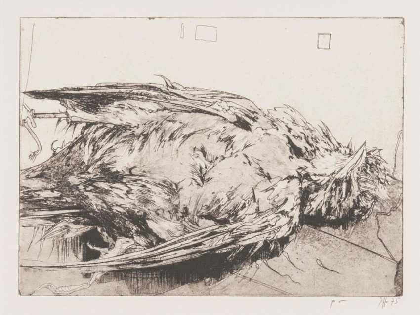 Мертвая Птица - фото 1