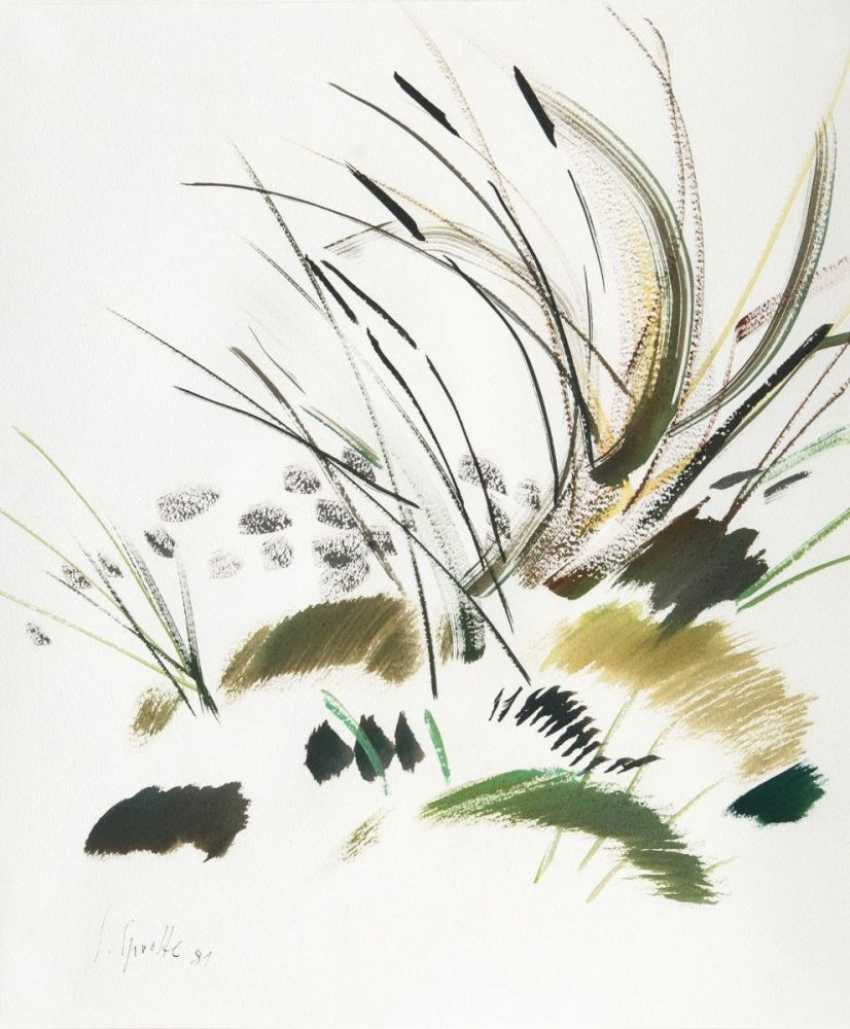 Травы на Ветру - фото 1