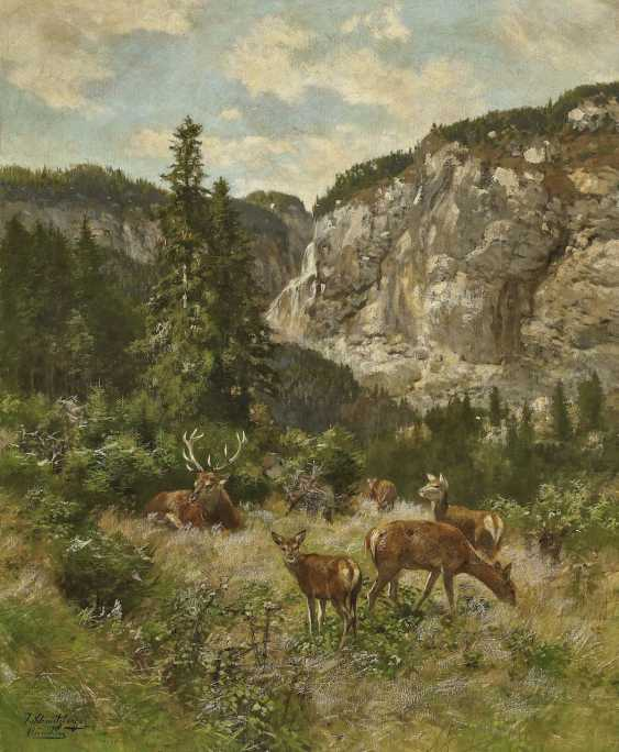 Hirsche in Gebirgslandschaft. Schmitzberger, Josef - Foto 1