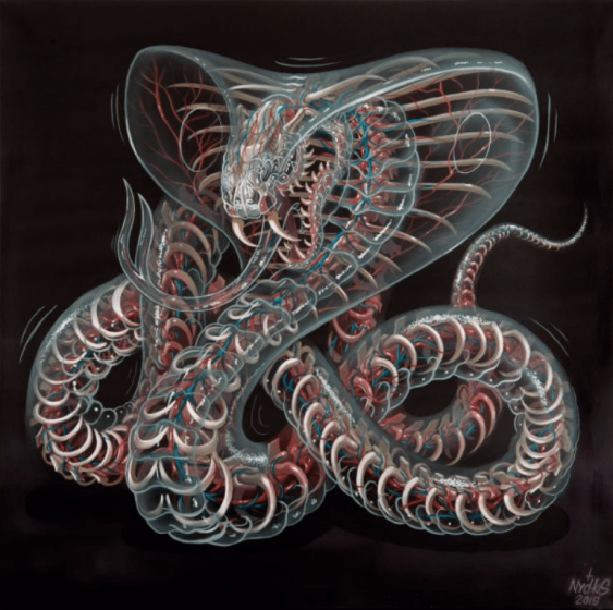 NYCHOS (AUT/82) - photo 1