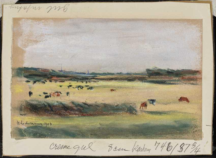 Landscape with grazing cows , Liebermann, Max 1847-Berlin - 1935 ibid. - photo 1