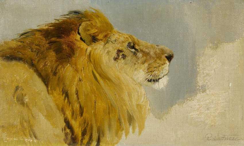 Lion's head - photo 1