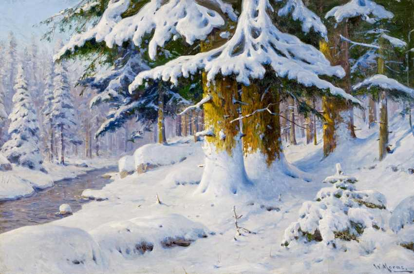 Winter forest - photo 1