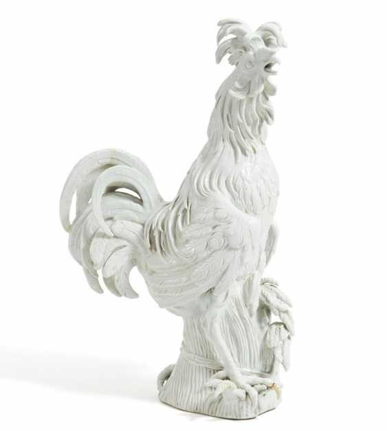 Great Paduan Rooster - photo 1