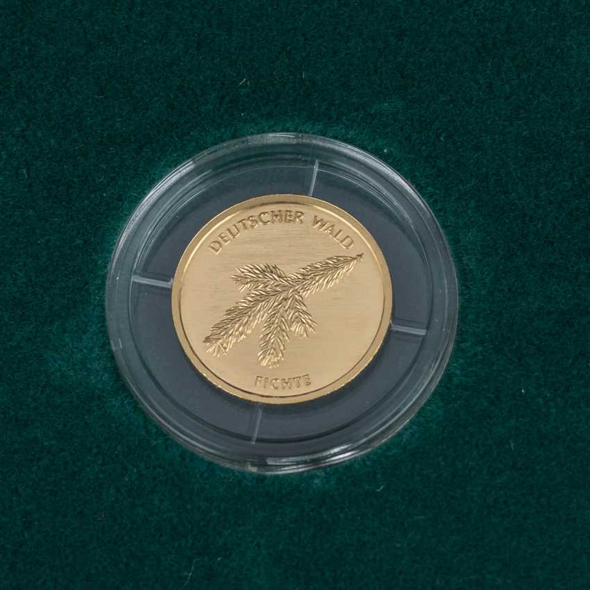 BRD/GOLD - Complete Set of 6 x 20 Euro-German forest, - photo 4