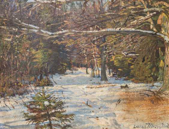 "MRZYGLOD, VINCENT LUCAS (Great-Patschin 1884-1952 Nysa), ""winter forest"", - photo 1"